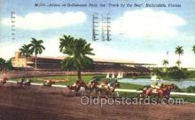 spo021050 - Hallandale, Florida USA Horse Racing Postcard Postcards