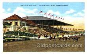 spo021052 - Hialeah Park, Miami FL USA Horse Racing Postcard Postcards