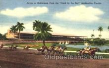 spo021054 - Hallandale, Florida USA Horse Racing Postcard Postcards