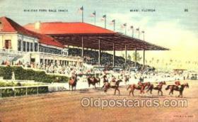 spo021055 - Hialeah Park, Miami FL USA Horse Racing Postcard Postcards