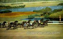 spo021072 - Inglewood, Cal, USA Horse Racing Postcard Postcards