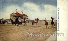 spo021081 - Sheepshead Bay, Brooklyn, NY, USA Horse Racing Trotter, Postcard Postcards