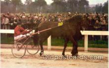spo021200 - Horse Racing, Trotters,  Postcard Postcards