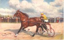 spo021308 - Horse Racing, Trotters,  Postcard Postcards