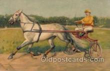 spo021321 - Trotter Horse Racing Postcard Postcards