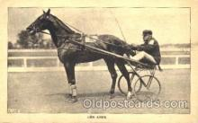 spo021420 - The Abbe, Horse Racing, Trotters, Postcard Postcards