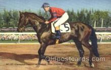 spo021424 - Champion Citation at Hialeah Course, Miami Florida USA, Horse Racing, Trotters, Postcard Postcards