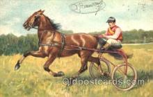 spo021428 - Horse Racing, Trotters, Postcard Postcards