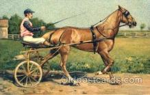 spo021455 - Horse Racing, Trotters, Postcard Postcards