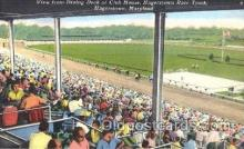 spo021463 - Hagerstown, Maryland, USA,  Race Track, Horse Racing, Trotters, Postcard Postcards