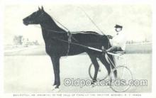 spo021486 - Dan Patch, Trotter Goshen NY USA Horse Racing, Trotter, Trotters, Postcard Postcards