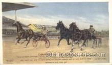 spo021489 - Champions of the World Horse Racing, Trotter, Trotters, Postcard Postcards