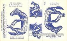 spo021491 - Circle Bar & Lounge Horse Racing, Trotter, Trotters, Postcard Postcards