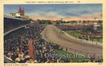 spo021495 - The Finish Churchill Downs Horse Racing, Trotter, Trotters, Postcard Postcards