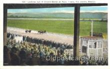 spo021497 - Grand Stand at Race Track Horse Racing, Trotter, Trotters, Postcard Postcards