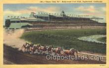 spo021500 - Hollywood Turf Club Horse Racing, Trotter, Trotters, Postcard Postcards