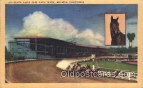 spo021501 - Santa Anita Park Race Track Horse Racing, Trotter, Trotters, Postcard Postcards