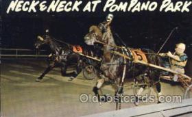 spo021503 - Pompano Park Horse Racing, Trotter, Trotters, Postcard Postcards