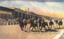 spo021506 - Pimlico Race Track Horse Racing, Trotter, Trotters, Postcard Postcards