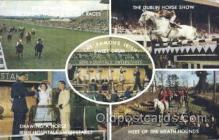 spo021521 - Irish Sweep Drum Horse Racing, Trotter, Trotters, Postcard Postcards