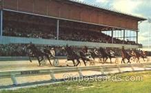 spo021523 - Batavia, New York, USA Horse Racing Postcard Postcards