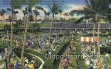 spo021541 - Hollywood, FL USA Horse Racing Old Vintage Antique Postcard Post Cards