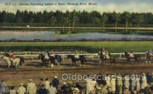 spo021546 - Hialeah Park, Miami, FL USA Horse Racing Old Vintage Antique Postcard Post Cards