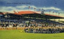 spo021547 - Hialeah Park, Miami, FL USA Horse Racing Old Vintage Antique Postcard Post Cards