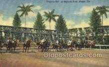 spo021550 - Miami, FL USA Horse Racing Old Vintage Antique Postcard Post Cards