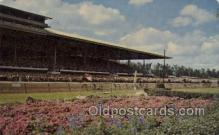 spo021551 - Miami, FL USA Horse Racing Old Vintage Antique Postcard Post Cards