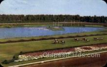 spo021552 - Miami, FL USA Horse Racing Old Vintage Antique Postcard Post Cards