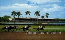 spo021553 - Miami, FL USA Horse Racing Old Vintage Antique Postcard Post Cards