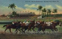 spo021554 - Hialeah Park, Miami, FL USA Horse Racing Old Vintage Antique Postcard Post Cards