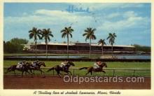 spo021556 - Miami, FL USA Horse Racing Old Vintage Antique Postcard Post Cards