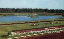 spo021565 - Hialeah Park, Miami, FL USA Horse Racing Old Vintage Antique Postcard Post Cards