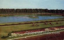 spo021572 - Hialeah Park, Miami, FL USA Horse Racing Old Vintage Antique Postcard Post Cards