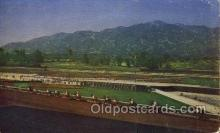 spo021575 - Santa Anita Park Arcadia, CA USA Horse Racing Old Vintage Antique Postcard Post Cards