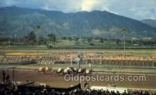 spo021576 - Santa Anita Park Arcadia, CA USA Horse Racing Old Vintage Antique Postcard Post Cards