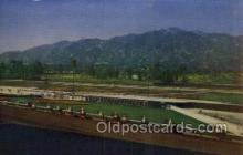 spo021578 - Santa Anita Park Arcadia, CA USA Horse Racing Old Vintage Antique Postcard Post Cards