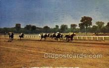 spo021585 - Saratoga Race Track, Saratoga Springs, NY USA Horse Racing Old Vintage Antique Postcard Post Cards