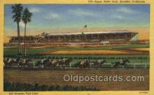 spo021597 - Santa Anita Park Arcadia, CA USA Horse Racing Old Vintage Antique Postcard Post Cards