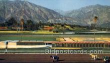 spo021609 - Santa Anita Park Arcadia, CA USA Horse Racing Old Vintage Antique Postcard Post Cards