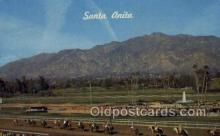 spo021610 - Santa Anita Park Arcadia, CA USA Horse Racing Old Vintage Antique Postcard Post Cards