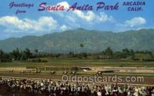 spo021611 - Santa Anita Park Arcadia, CA USA Horse Racing Old Vintage Antique Postcard Post Cards