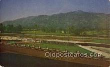 spo021625 - Santa Anita Park Arcadia, CA USA Horse Racing Old Vintage Antique Postcard Post Cards