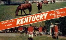 spo021626 - KY USA Horse Racing Old Vintage Antique Postcard Post Cards