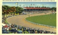 spo021632 - York, PA USA Horse Racing Old Vintage Antique Postcard Post Cards
