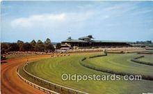 spo021635 - Horse Racing Postcard Post Card