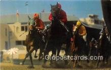 spo021637 - Horse Racing Postcard Post Card