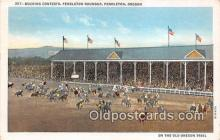 spo021639 - Horse Racing Postcard Post Card